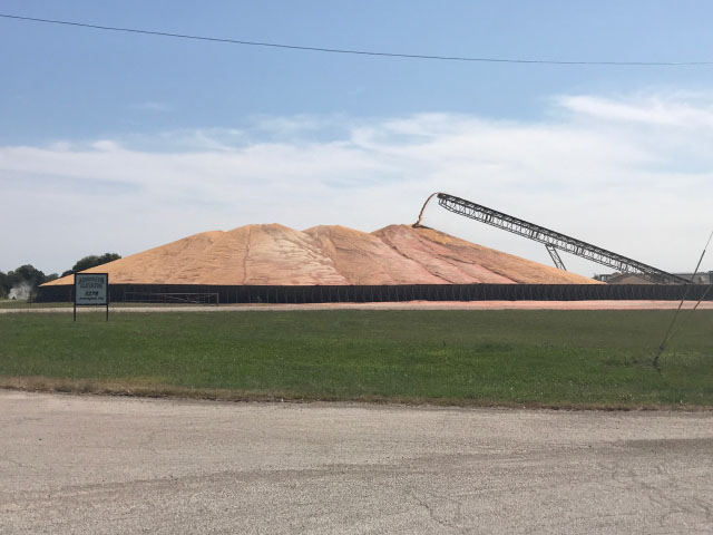 Piles of old crop corn, like this one at Armington, Illinois, have been popping up in the Eastern Corn Belt ahead of new-crop harvest. (Photo by Chad Colby, general manager of Central Illinois AG)