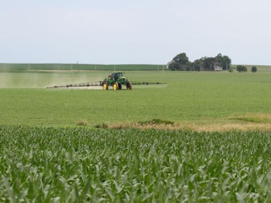 The new EPA rules on spraying dicamba in Xtend soybeans don't necessarily apply to applications of dicamba in corn. But it's important to check state rules before making that determination. (DTN photo by Pamela Smith)