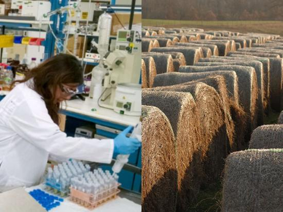Edeniq's technology allows corn-ethanol plants to track cellulosic gallons produced from corn fiber. (Photo on left courtesy of Edeniq; DTN/The Progressive Farmer photo of bales by Jim Patrico)