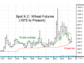 The long-term chart of K.C. wheat shows that no matter how crazy prices get in the short run, they typically return to the 10-year average (green line) within a few years -- a good reminder of the market's powerful balancing effect. (DTN chart by Todd Hultman)