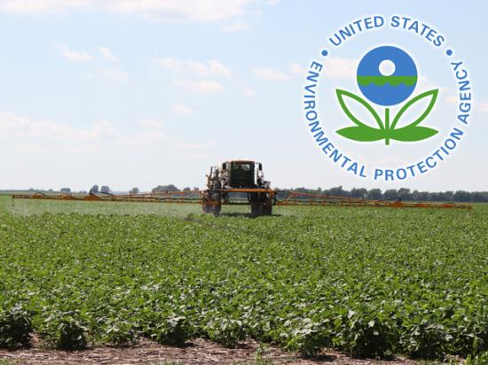 EPA has confirmed it is considering limiting state pesticide restrictions in response to the growing number of 24(c) labels restricting dicamba use in individual states. (DTN photo graphic)