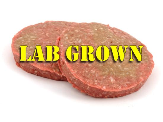 Several companies are investing more heavily in products that come from cattle or poultry cells that are then developed in a lab. (DTN photo illustration)