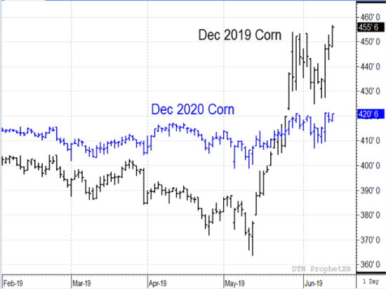 As 2019 corn prices go higher -- fueled by unusually harsh planting conditions -- the outlook for 2020 corn prices is becoming more bearish. (DTN ProphetX chart)