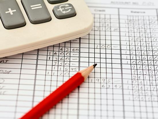 Several tax breaks commonly used by farmers could trigger an IRS audit, and experts say that's why it's important to be able to defend your deductions with a detailed income and expense record. (DTN file photo)