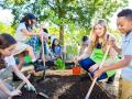 Farm to School programs have components that include education, caring for school gardens, and procurement of local foods. (Getty Images)