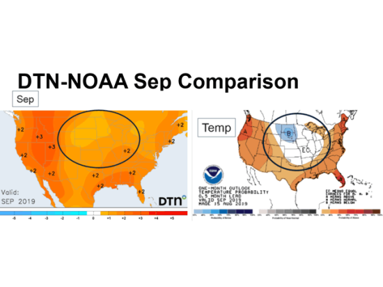 DTN September temperature forecasts (left) indicate a milder trend for the late crop season compared with NOAA predictions (right). (DTN graphic)