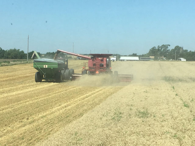 Winter wheat harvest on July 2 near Viola, Kansas. (Photo by Scott Van Allen)
