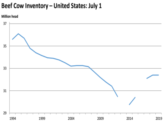 USDA data shows that, since 2014, the U.S. domestic beef cow inventory has been growing. With a vigorous slaughter in 2019, it will be interesting to see what the January 2020 beef cow inventory is. (Graph from USDA July 2019 Cattle Inventory Report)