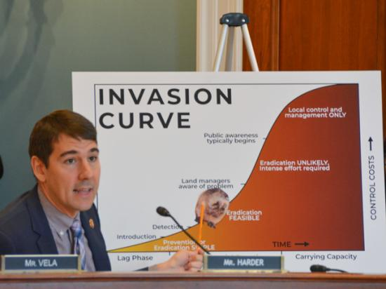 During a hearing by the House Agriculture Subcommittee on Livestock and Foreign Agriculture, Rep. Josh Harder, D-Calif., highlights concerns about nutria -- also called swamp rats -- an invasive species starting to expand in parts of California. (DTN photo by Chris Clayton)