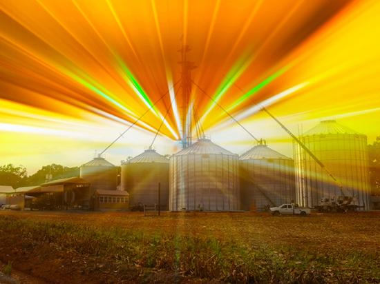 (Progressive Farmer photo illustration by Brent Warren and Barry Falkner)