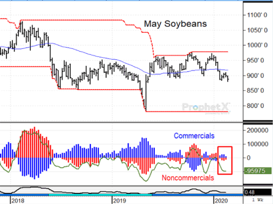 Nearly every commodity is trading lower this week as coronavirus spread to 47 countries. In the case of May soybeans, it is interesting that commercials are slightly net long, finding attractive value at prices near nine-month lows. (DTN ProphetX chart)