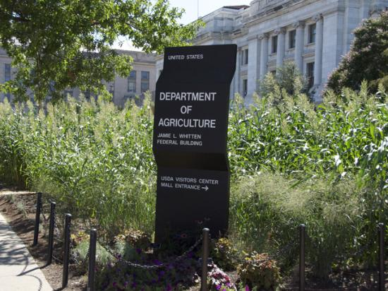 Senate Democrats released a report on Tuesday calling out USDA's methodology for creating the Market Facilitation Program. (DTN file photo by Nick Scalise)