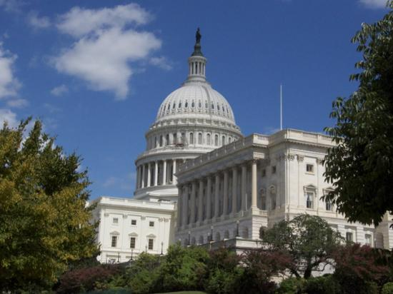 The House passed legislation Friday to help the economy respond to the COVID-19 pandemic. The bill would boost agriculture and food aid in different ways, including providing direct aid to livestock producers. (DTN file photo)