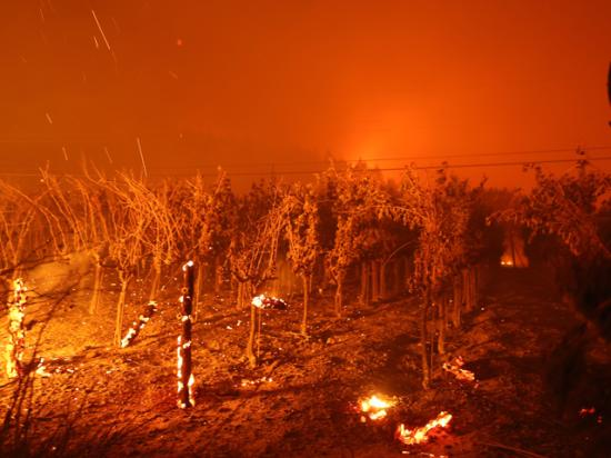 The Chateau Boswell Winery burns as the Glass Fire moves through the area on Sept. 27, 2020, in St. Helena, California. (Photo by Justin Sullivan/Getty Images)