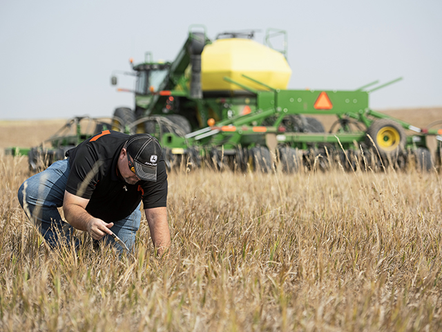 Travis Freeburg, of R and K Farms, has spent years fine-tuning his seedbed and nutrient management at planting time to coax bin-busting yields from his wheat fields in Wyoming and Nebraska. (Progressive Farmer image by Joel Reichenberger)