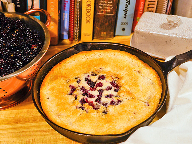 On hard days, look to find the good, like taking time to pick blackberries to make a homemade cobbler for dessert. (DTN/Progressive Farmer photo by Meredith Bernard)