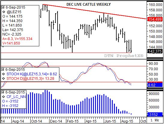 Dec live cattle posted a new contract low last week. (Source: DTN ProphetX)