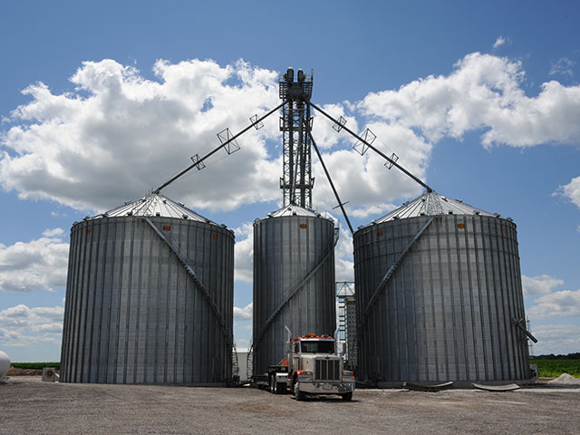 Many farmers have been injured and even killed working in and around grain bins. A Minnesota program is encouraging farmers to upgrade their safety equipment to help prevent injuries. (DTN photo by Pamela Smith)
