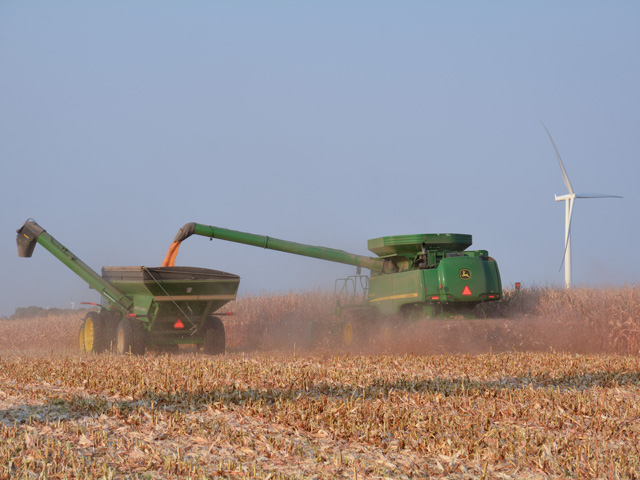 Good drying weather in mid-October will help corn moisture levels to decrease but not as fast in fields hit by the recent derecho. Corn drydown calculators could provide inaccurate estimates in those areas. (DTN/Progressive Farmer photo by Matthew Wilde)