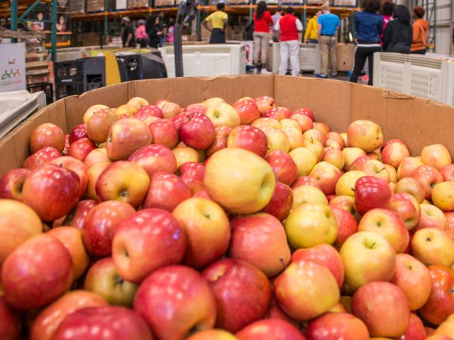 Farmers who grow apples, blueberries, garlic, potatoes, raspberries and tangerines can apply for losses under the CARES Act after USDA determined they had losses of greater than 5% earlier this year due to COVID-19. (Photo courtesy of USDA.gov)