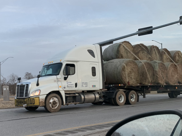 As drought worsens, emergency measures are taking place, and cattle producers have begun to ship in hay to survive. (DTN/Progressive Farmer file photo by Anthony Greder)