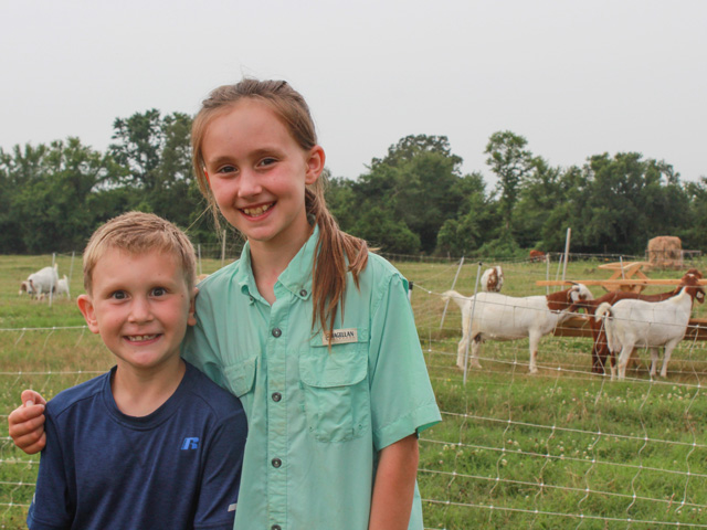 Henry and Jewel Stewart, of Judsonia, Arkansas, are learning a valuable lesson on taking care of livestock as they prepare to exhibit three types of livestock at various fairs. (DTN photo by Jessica Wesson)