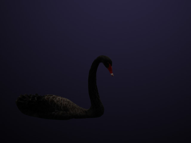 A black swan is an event or occurrence that deviates beyond what is normally expected of a situation and that would be extremely difficult to predict. The coronavirus and its impact on markets has become such an event. (DTN illustration by Nick Scalise)
