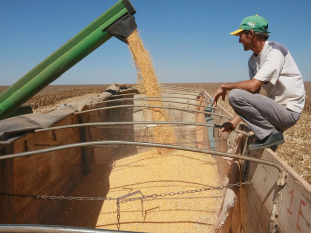 USDA made no change to its Brazilian corn production estimate on Tuesday despite La Nina-type weather in the southern part of Brazil, leaving the number at 95 million metric tons. (DTN file photo)