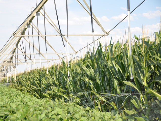 Watering crops in August can help finish crop development during a time that tends to be dry in many regions. (DTN file photo by Chris Clayton)