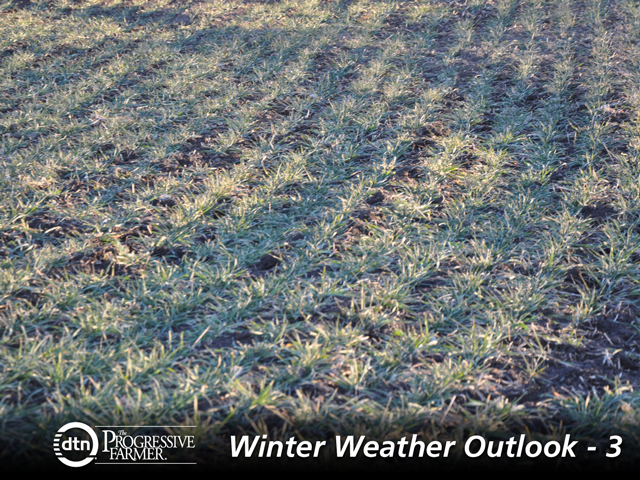 Soil moisture in the Southern Plains Wheat Belt may see a late-winter addition if El Nino-related trends in the Pacific Ocean continue. (DTN photo by Katie Micik)