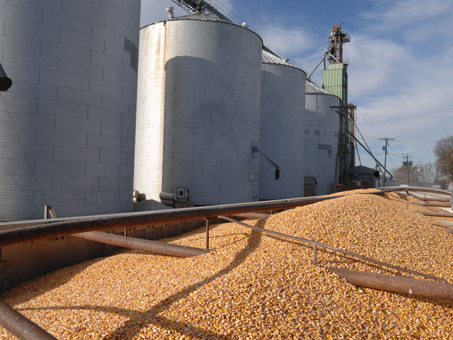 Corn growers received 1 cent per bushel in trade aid under the first Market Facilitation Program versus $1.65 per bushel that soybean growers received. (DTN/Progressive Farmer file photo by Jim Patrico)