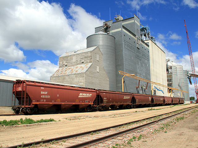 BNSF cars wait to be loaded at a grain elevator near Edgeley, North Dakota. Farmers this year are going to have to figure out how to store soybeans because of a lack of exports out of the Pacific Northwest. (DTN file photo by Elaine Shein)