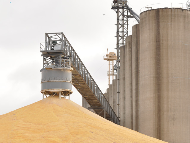 U.S. corn stocks totaled 11.212 billion bushels as of Dec. 1, USDA said on Tuesday. (DTN file photo by Scott Kemper)