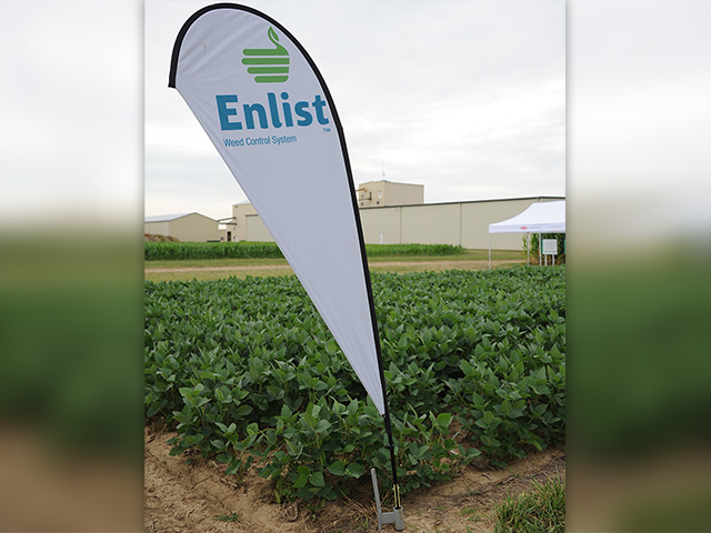 Pending final registration of Enlist Duo, Dow hopes to sell Enlist cotton for the 2017 season. Enlist corn and soybeans are still awaiting Chinese import approvals. (DTN photo by Pamela Smith)