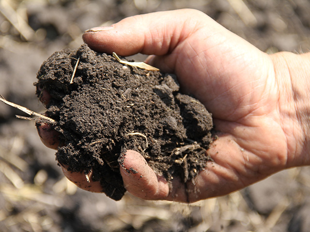 The season may be busy, but this is the right time to think about pulling soil samples. (DTN file photo)