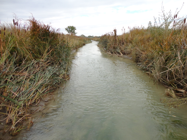 Farm groups fear the waters of the United States rule would give EPA authority to regulate tributaries, streams and other intermittent water bodies on U.S. farms and ranches. (DTN/The Progressive Farmer file photo by Jim Patrico)