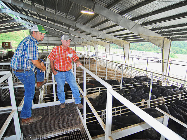 Blake Francis (left) and Jerry Roberts maximize the profit potential of their smaller herds, by being members of the Mountain Cattle Alliance. (DTN/Progressive Farmer photo by Mike Boyatt)