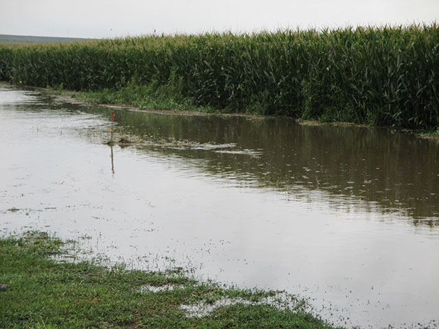 A photo from northwest Iowa taken Monday after last weekend's rains. (Photo by Randy Bush)