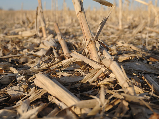 DowDuPont has announced it will sell its cellulosic ethanol plant in Nevada, Iowa, that uses corn stover as a feedstock. (DTN/The Progressive Farmer file photo by Jim Patrico)