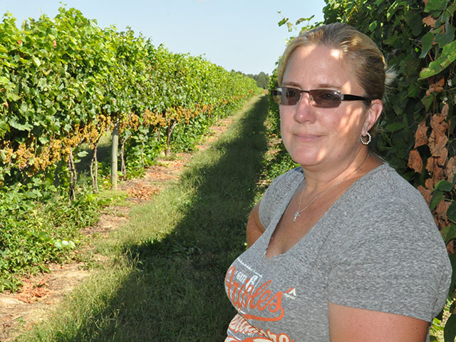 Jennie Schmidt stands in her farm's 22-acre vineyard in eastern Maryland. The Schmidts have one of the largest vineyards in Maryland, though the farm sells all of its grapes to Maryland wine producers. (DTN photo by Chris Clayton)