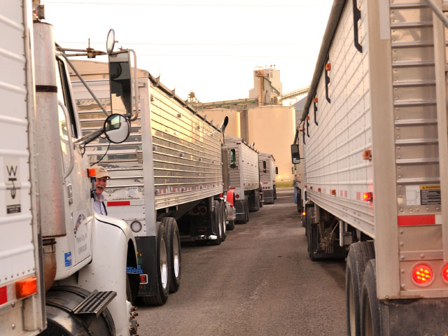 Trucks waiting to be unloaded at Cargill elevator and biodiesel plant, KCMO. (DTN photo by Jim Patrico)