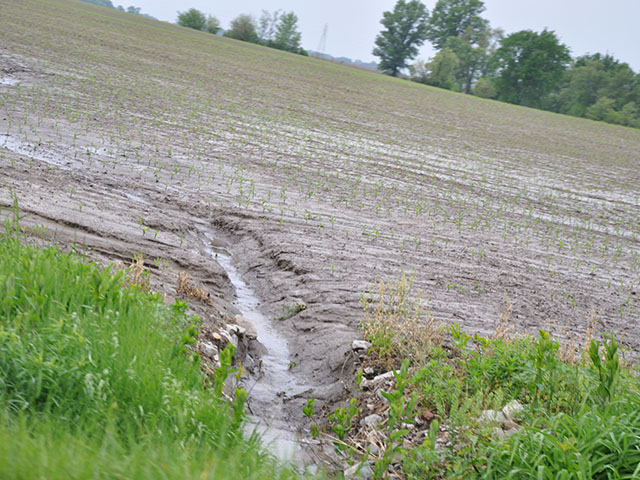 Erosion from a cornfield after a heavy spring rain. Groups such as the Soil Health Institute are trying to encourage commodity farmers to adopt practices that would reduce such erosion. (DTN file photo)
