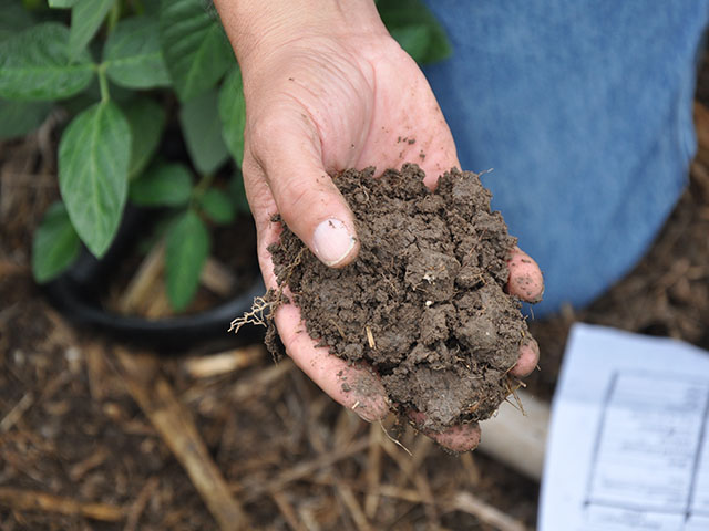 Set some goals for your soil health and follow up by tracking the microbial activity in your fields. (DTN photo by Chris Clayton)