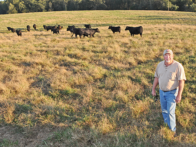 Barry Cronic uses GeneMax Focus tests on his commercial Angus heifers to rank them for gain and marbling, and to identify their sire. (DTN/Progressive Farmer photo by Becky Mills)