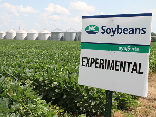 Syngenta says a purchase by ChemChina would offer more choice rather than consolidation in the seed industry. (DTN photo by Pamela Smith)