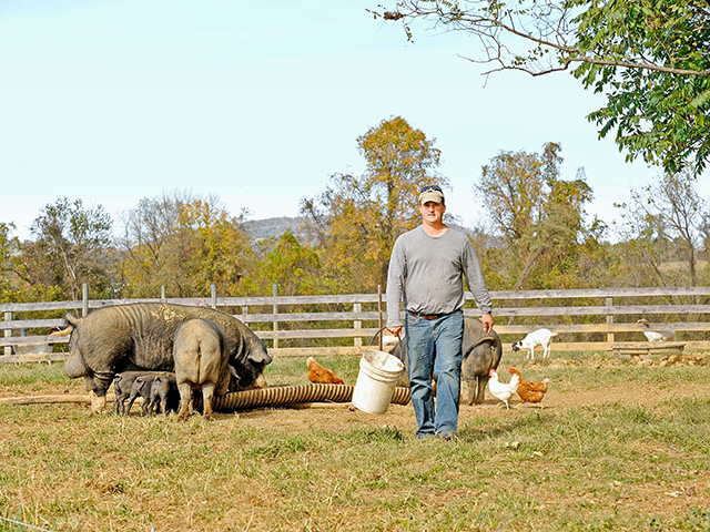 Andrew Crush catches the direct-to-consumer tide with sustainably raised heritage pork. (DTN/Progressive Farmer photo by Jim Patrico)