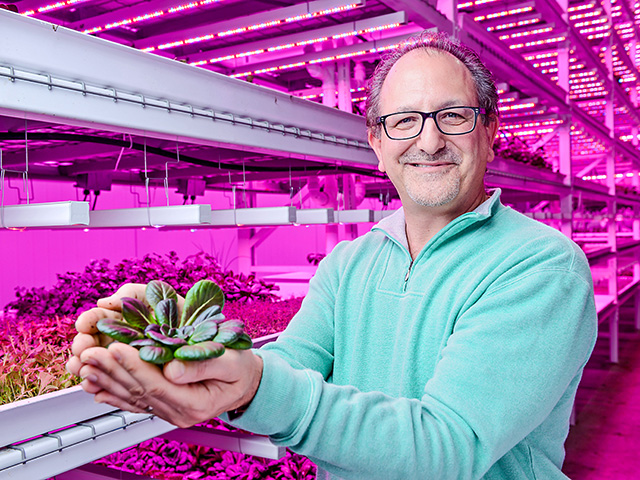 Lettuce isn't a typical Midwestern crop, but Robert Colangelo's Green Sense Farms in Indiana is anything but typical. (Progressive Farmer photo by Travis Anderson)