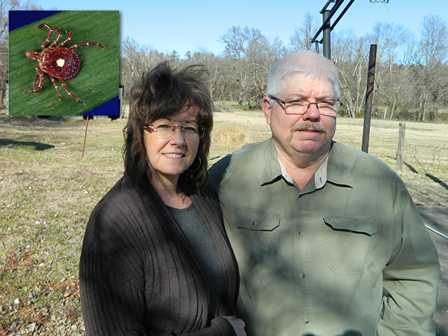 Arkansas farmer Dan Wright and his wife Belinda haven't been able to eat beef and pork since contracting an allergy to mammals from a lone star tick bite. The allergy wasn't officially recognized until 2009, but has been increasingly diagnosed around the country. (Photo by Chris Clayton; Tick photo courtesy CDC - U.S. Centers for Disease Control)