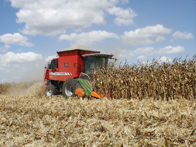 While harvesting corn, farmers should make sure their combine settings are appropriately adjusted to minimize grain damage and fines, as both fines and damaged kernels are potential homes for mold growth and insects. (DTN file photo by Jim Patrico)