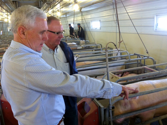 Indiana Gov. Mike Pence visits a hog farm in his state in 2013. (Photo from the Indiana governor's office website)